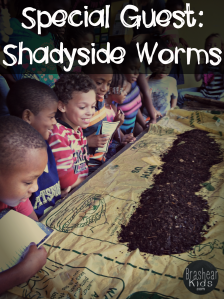 Special guest shadyside worms